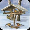 Wintervogelfutter